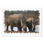 Invitación negra del rinoceronte