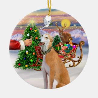 Invitación para un galgo rojo claro ornamento de navidad