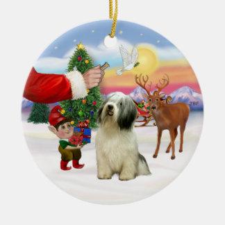 Invitación para un perro pastor de la tierra baja ornamentos de reyes