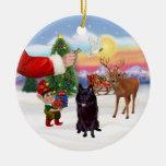 Invitación para un Schipperke Ornamento De Navidad