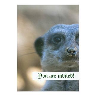 Invitación personalizada Meerkat divertida