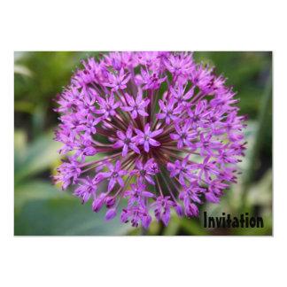 Invitación púrpura de la cabeza de flor del allium