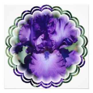 Invitación púrpura del iris barbudo