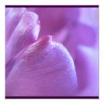 Invitación púrpura del pétalo del tulipán invitación 13,3 cm x 13,3cm