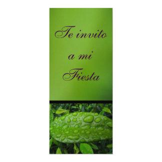 Invitación - Te invito a mi Fiesta - Verde 4x9.25 Paper Invitation Card