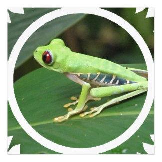 Invitación verde de la rana arbórea