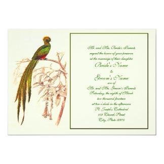Invitación verde del pájaro del ganador 7-19-10