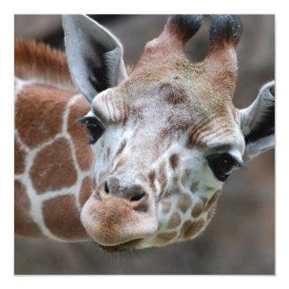 """Invitaciones adorables de la jirafa invitación 5.25"""" x 5.25"""""""