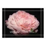 Invitaciones color de rosa coralinas de la comunicados personales