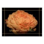 Invitaciones color de rosa coralinas de la renovac comunicados personales