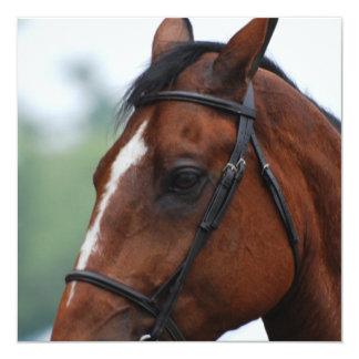 """Invitaciones cuartas del perfil del caballo invitación 5.25"""" x 5.25"""""""