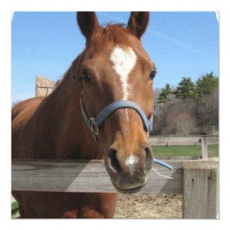 Invitaciones cuartas dulces del caballo invitaciones personales