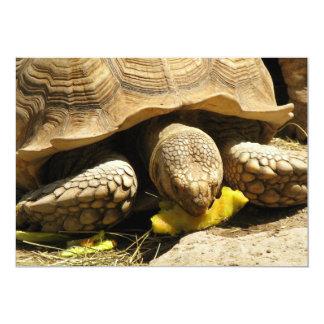 """Invitaciones de la tortuga invitación 5"""" x 7"""""""