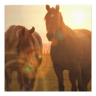 Invitaciones de los caballos de la puesta del sol invitaciones personales