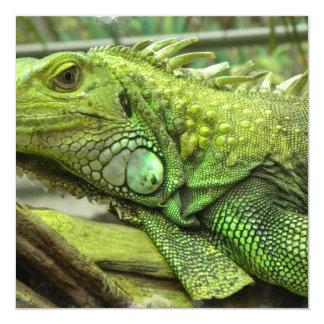 Invitaciones de reclinación del lagarto invitación 13,3 cm x 13,3cm