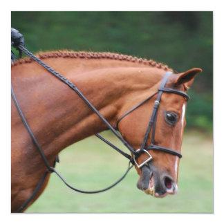 """Invitaciones del caballo de la demostración de la invitación 5.25"""" x 5.25"""""""