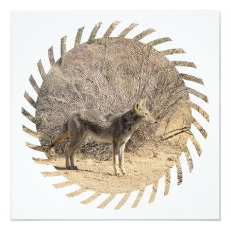 """Invitaciones del diseño del coyote invitación 5.25"""" x 5.25"""""""