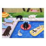 Invitaciones del fiesta del verano de Labradors de Invitación Personalizada
