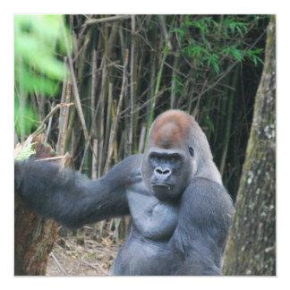 Invitaciones del gorila del Silverback que se Invitación 13,3 Cm X 13,3cm