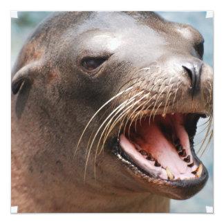 """Invitaciones del león marino de California Invitación 5.25"""" X 5.25"""""""