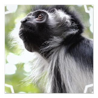 """Invitaciones del perfil del mono de Colobus Invitación 5.25"""" X 5.25"""""""