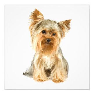 Invitaciones del perrito de Yorkie Invitacion Personalizada