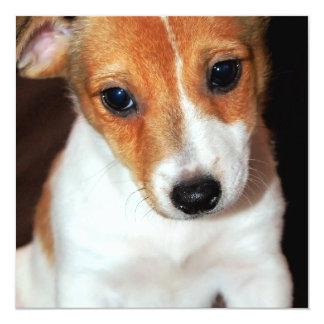 """Invitaciones del perro de perrito de Jack Russell Invitación 5.25"""" X 5.25"""""""
