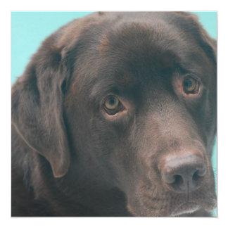 """Invitaciones del perro del laboratorio del invitación 5.25"""" x 5.25"""""""