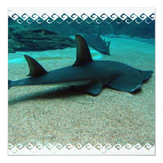 """Invitaciones del tiburón de arena invitación 5.25"""" x 5.25"""""""