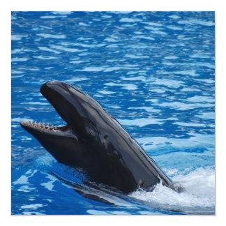 """Invitaciones falsas de la orca invitación 5.25"""" x 5.25"""""""