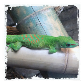 """Invitaciones gigantes del cuadrado del Gecko del Invitación 5.25"""" X 5.25"""""""