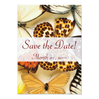 Invitaciones hermosas de la colección de la invitación 12,7 x 17,8 cm