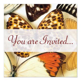 Invitaciones hermosas de la colección de la invitación 13,3 cm x 13,3cm