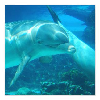 Invitaciones juguetonas de los delfínes invitación 13,3 cm x 13,3cm