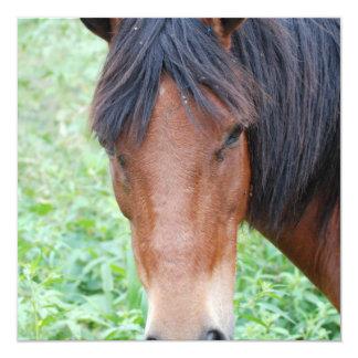 Invitaciones lindas del caballo de Paso Fino Invitacion Personalizada