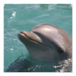 Invitaciones lindas del delfín comunicado personalizado