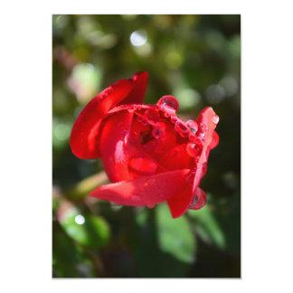"""Invitaciones miniatura del rosa rojo invitación 5"""" x 7"""""""