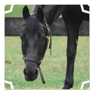 """Invitaciones negras del caballo invitación 5.25"""" x 5.25"""""""