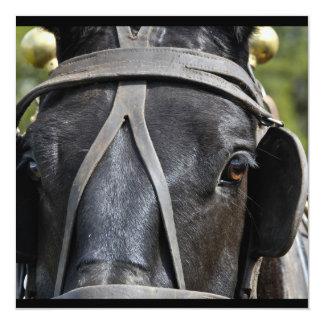 """Invitaciones negras del caballo de proyecto invitación 5.25"""" x 5.25"""""""