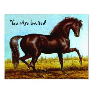 """Invitaciones negras del fiesta del caballo de la invitación 4.25"""" x 5.5"""""""