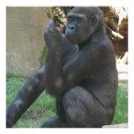 Invitaciones pensativas del gorila invitaciones personales