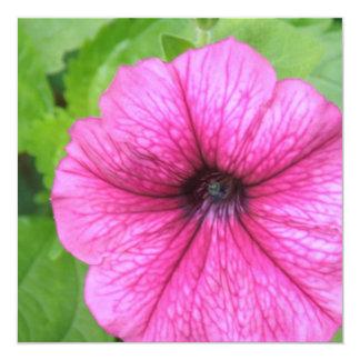"""Invitaciones rosadas de la flor de la petunia invitación 5.25"""" x 5.25"""""""