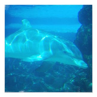 """Invitaciones subacuáticas del delfín invitación 5.25"""" x 5.25"""""""