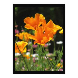 "Invitation - California Poppies - Multipurpose 6.5"" X 8.75"" Invitation Card"