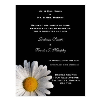 Invitation - Chamomile Postcard