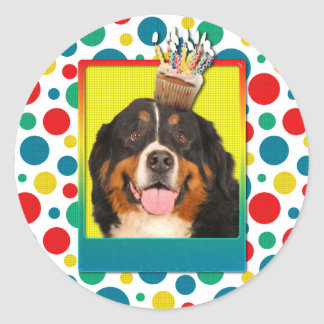 Invitation Cupcake - Bernese Mountain Dog Classic Round Sticker