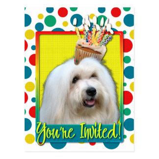 Invitation Cupcake - Coton de Tulear Postcard