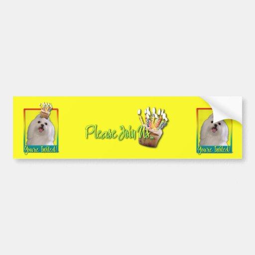 Invitation Cupcake - Maltese Car Bumper Sticker