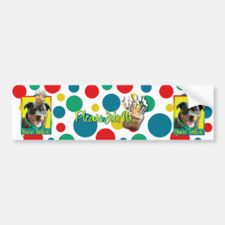 Invitation Cupcake - Rottweiler - SambaParTi Bumper Sticker