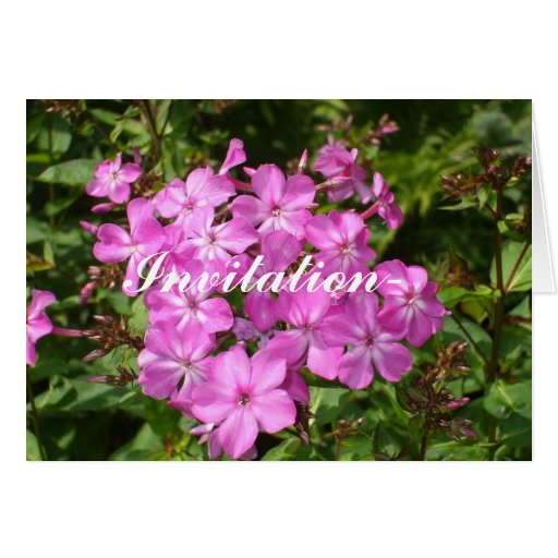 Invitation-Garden Party-Pink Flowers Stationery Note Card